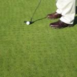 golfer making a putting stroke