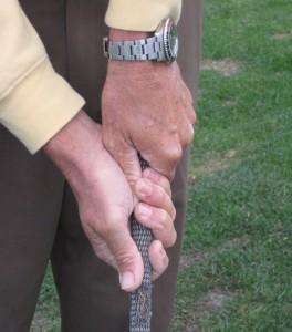 basic golf grip